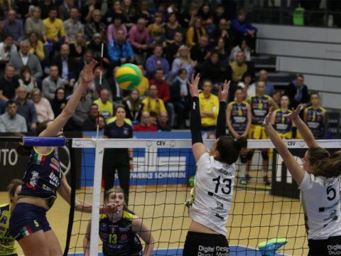 PANTERE KO IN GERMANIA, LO SCHWERIN VINCE 3-0